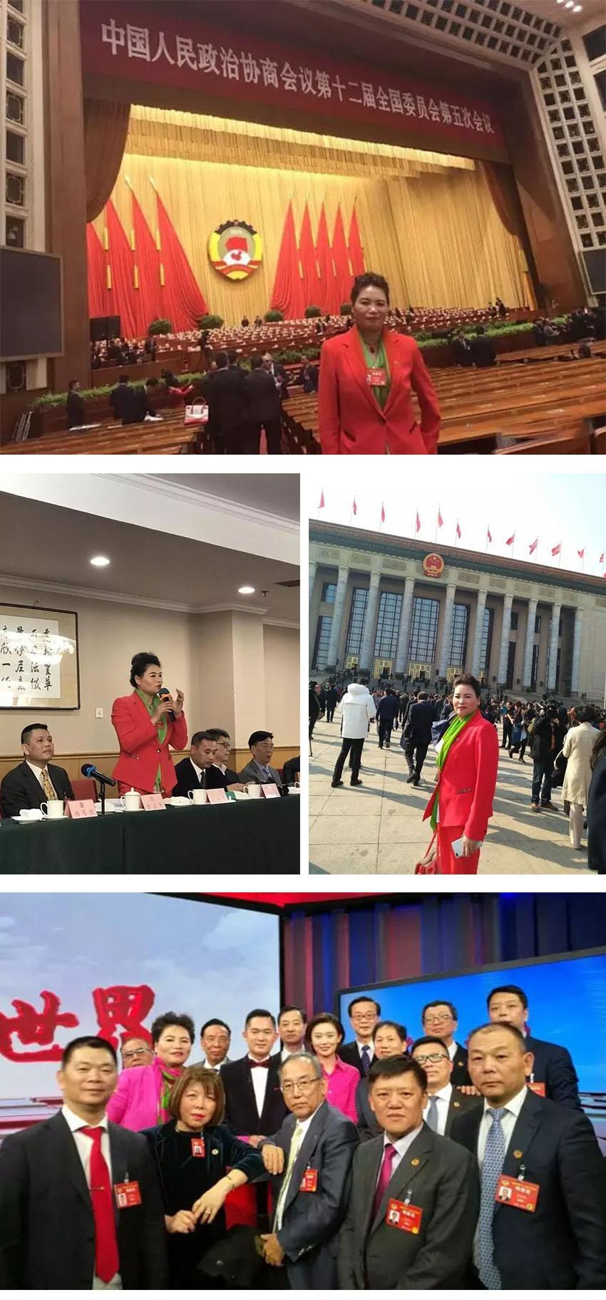 2017全国政协会议 (1).jpg